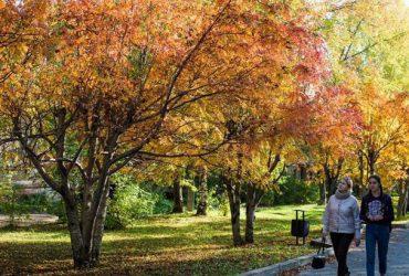 Mẹo giúp sức khỏe vào mùa thu